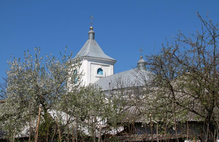 Купола летней церкви монастыря Хирова, Орхей